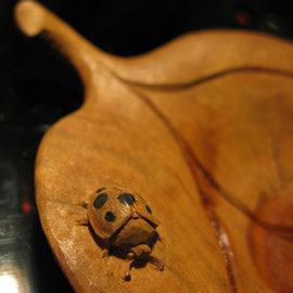 木の葉茶托